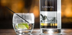Elemental Gin